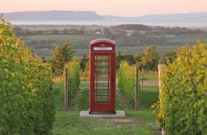 who you gonna call? The phonebox at Luckett Vineyards