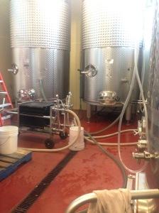 Winery octopus.