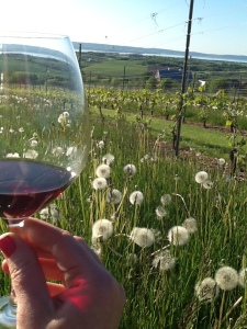 Nothin' beats a glass of wine in your own back yard